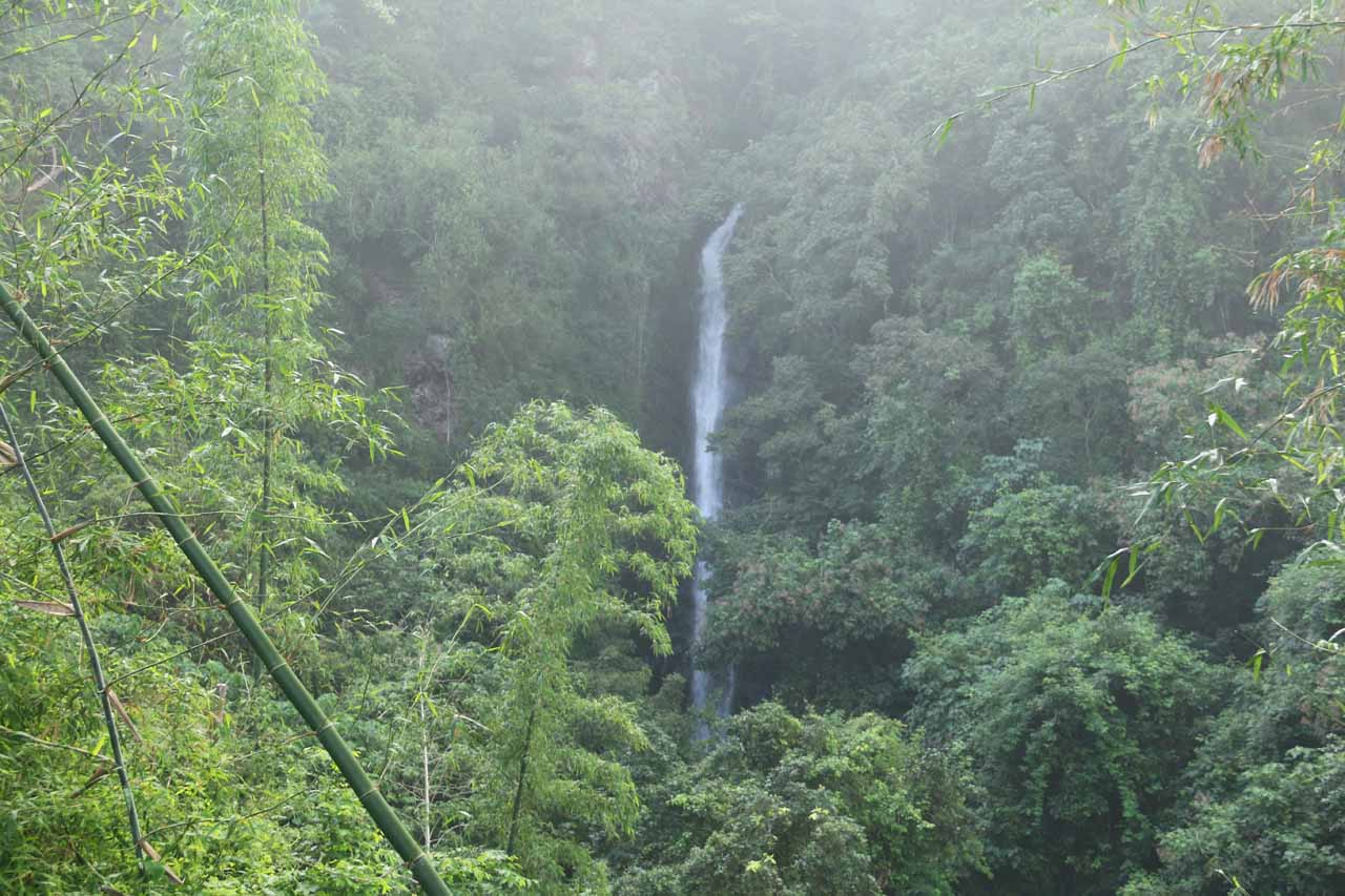 This was the partial view of the Dajin Waterfall that we got from the shelter at the apex of the hike