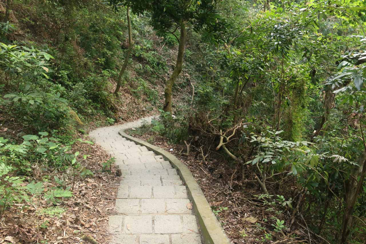 The trail then descended down these steps leading to the base of the Dajin Waterfall