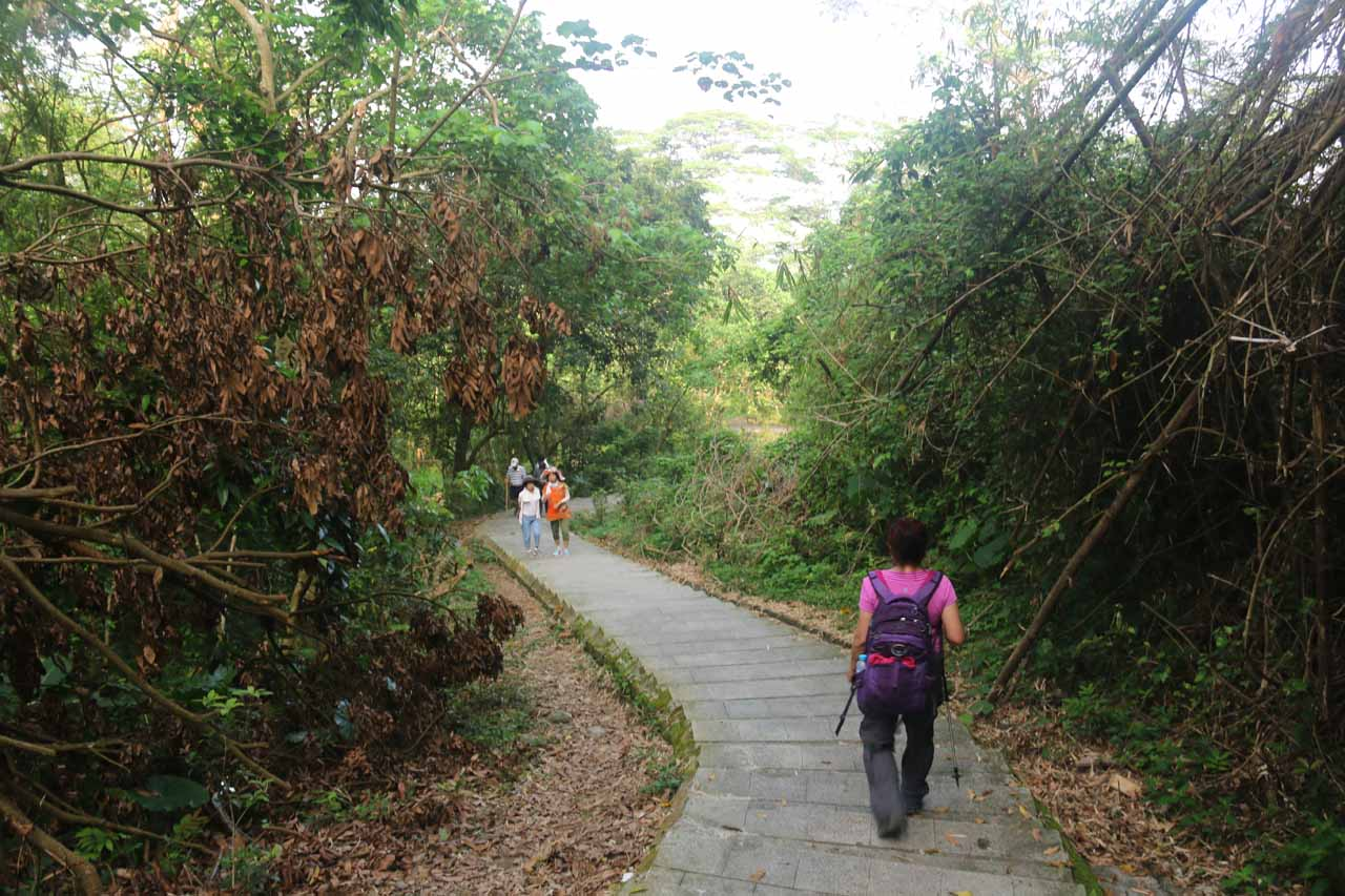 Lots of people were heading up to the Dajin Falls while we were heading down