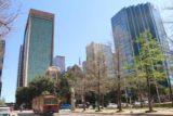 Dallas_761_03192016