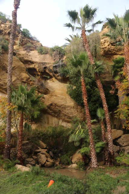 Dana_Point_Waterfall_010_01092017 - Looking up at the Dana Point Waterfall that was hardly flowing despite us being here a few hours removed from the passing of the last rain storm
