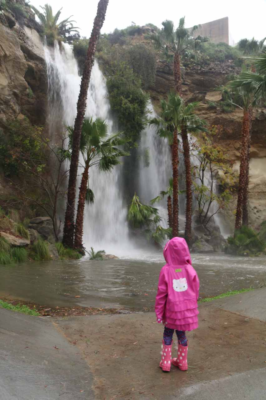 This was about as close as Tahia could safely view the Dana Point Waterfall.  It wasn't wise to get any closer due to the high bacteria levels in the water and its spray as well as the slippery and muddy conditions all around the plunge pool