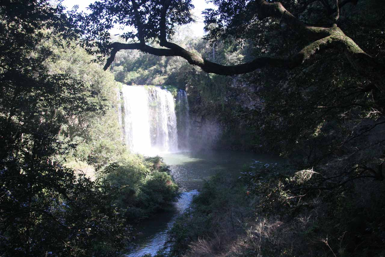 Just 2km north of Dorrigo, which itself was about 5km north of Crystal Shower Falls, was the attractive Dangar Falls