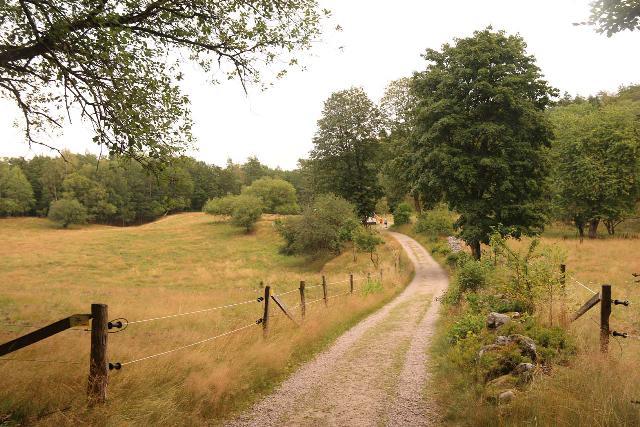 Danska_Fall_029_07292019 - Traversing through a pasture on the way to Danska Fall
