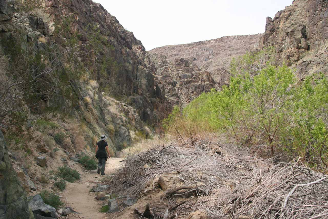 The canyon walls close in the further you go