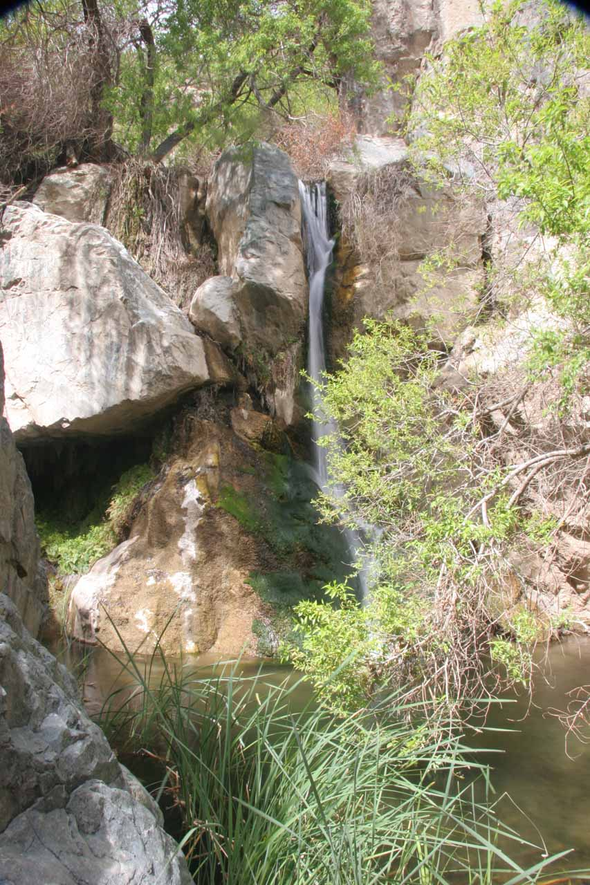 Partial view of Darwin Falls from the end of our walk
