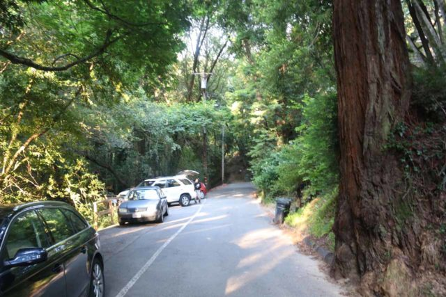 Dawn_Falls_004_05222016 - This was the end of Madrone Ave, where the Dawn Falls Trail began. There was limited parking space behind the white lines to the left so an early start was a must