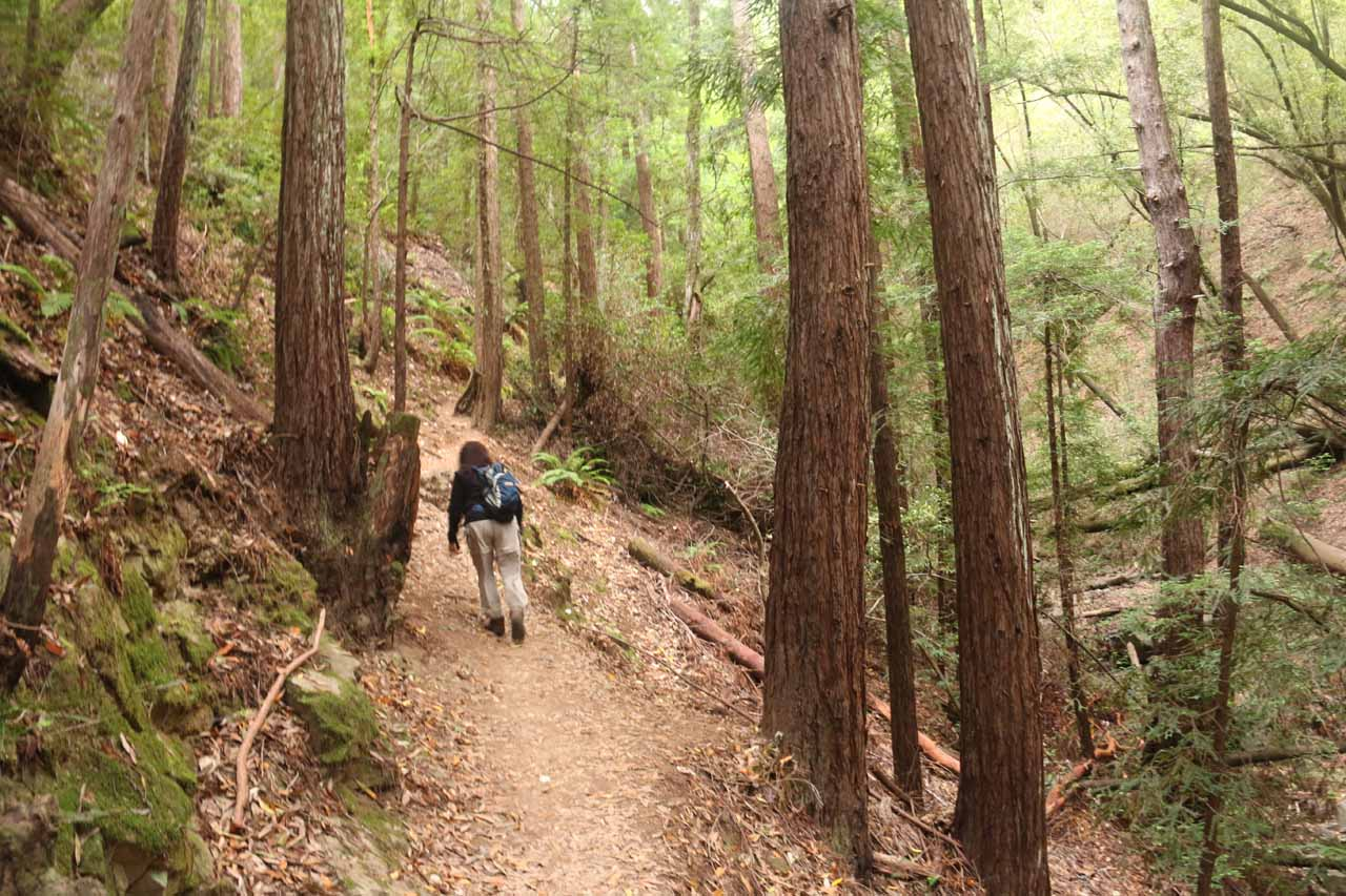 On a narrower trail hugging the contours of Baltimore Canyon