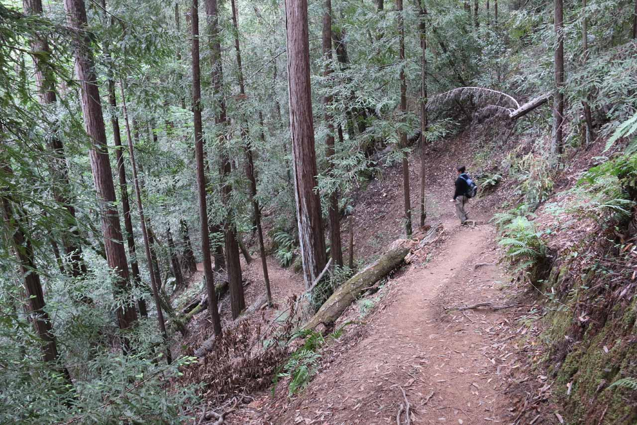 Mom starting to head back down towards the floor of Baltimore Canyon