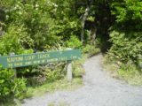 Dawson_Falls_001_11172004 - The signpost for the Kapuni Loop Track as seen in November 2004. The rest of the photos in this photo gallery were taken on this day