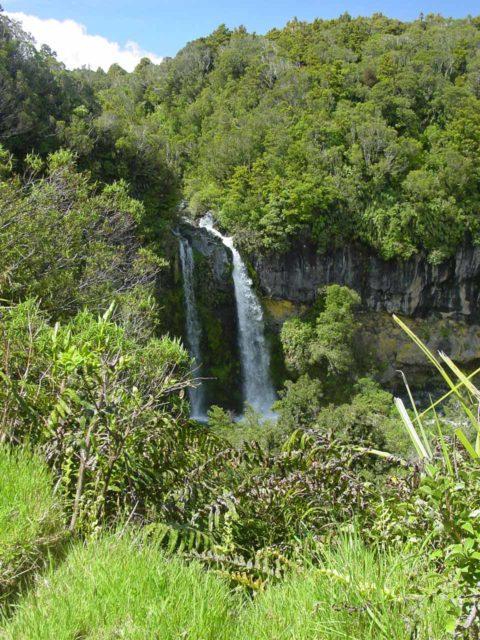 Dawson_Falls_005_11172004 - Dawson Falls
