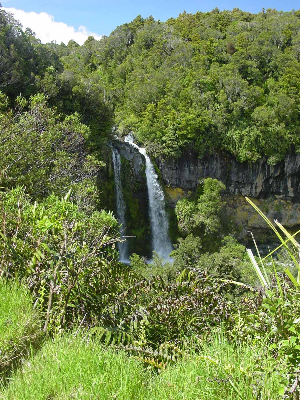Dawson Falls viewed from further away on the Kapuni Loop