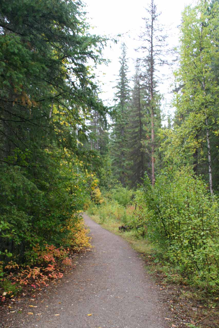 Initially the trail passed through a wooded area