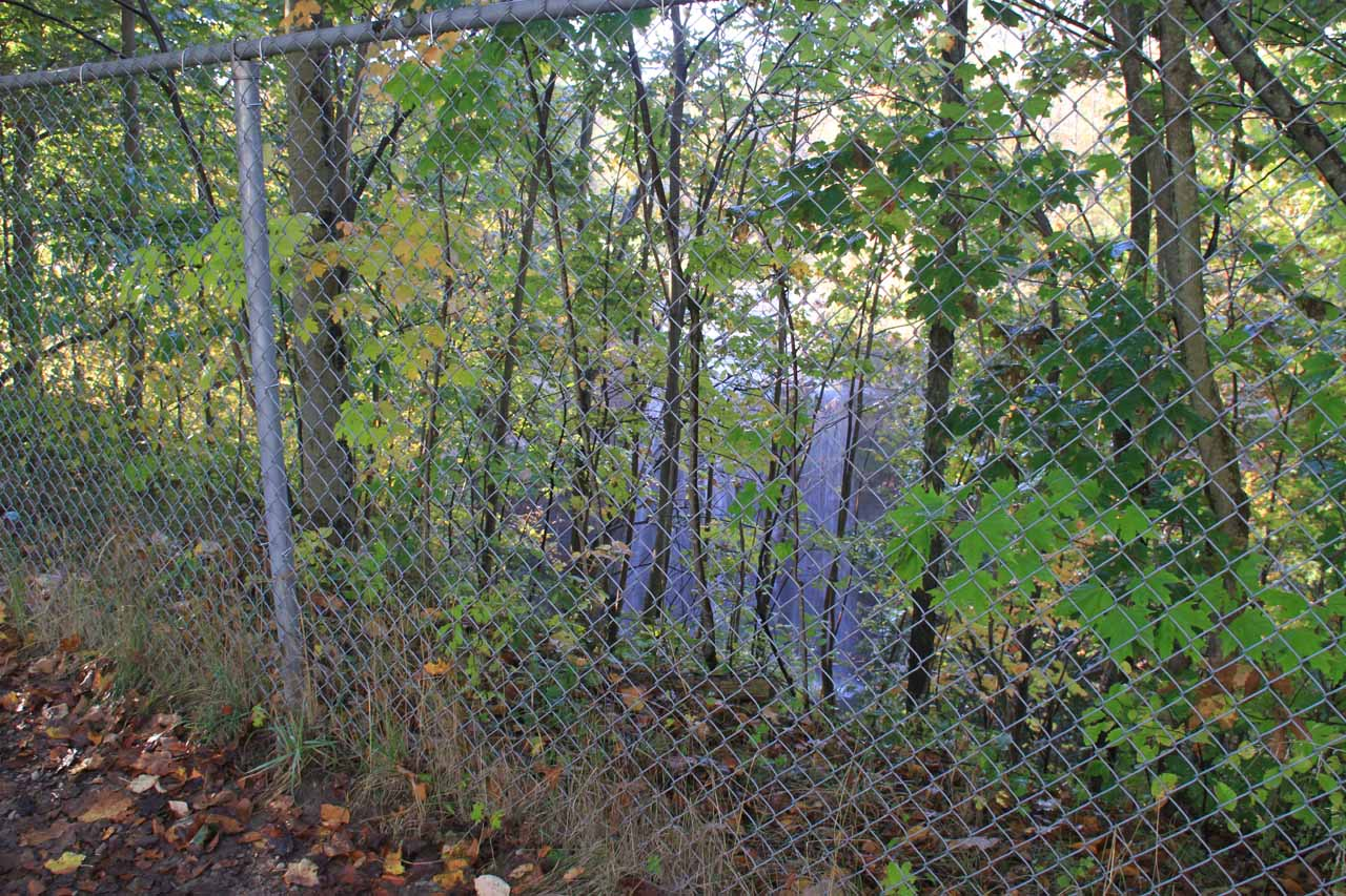 With the hideous fencing in the way, this was the most frontal view of DeCew Falls that I was going to get