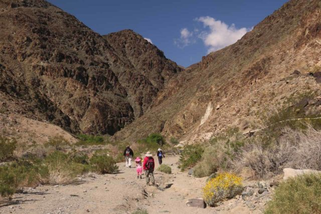 Death_Valley_17_046_04082017 - The family making their way up the dry wash towards the closing in of the canyon, which harbored the Darwin Falls. Notice the water pipes coming in from the right, which proved that this area does have water despite its harsh desert environment