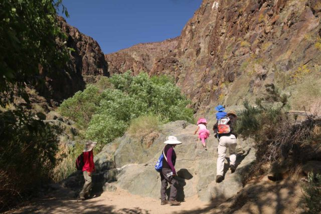 Death_Valley_17_066_04082017 - The family negotiating some of the trickier parts on the way to Darwin Falls