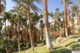 Death_Valley_17_393_04082017 - Within the palm-tree-lined oasis of the Marquez Garden at the Furnace Creek Inn