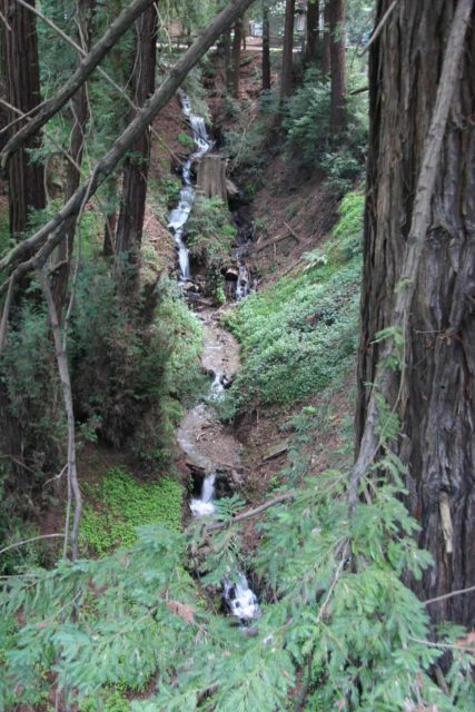 Deetjens_003_03192010 - The Castro Canyon Waterfall as seen from Hwy 1 by the Deetjen's Big Sur Inn Property