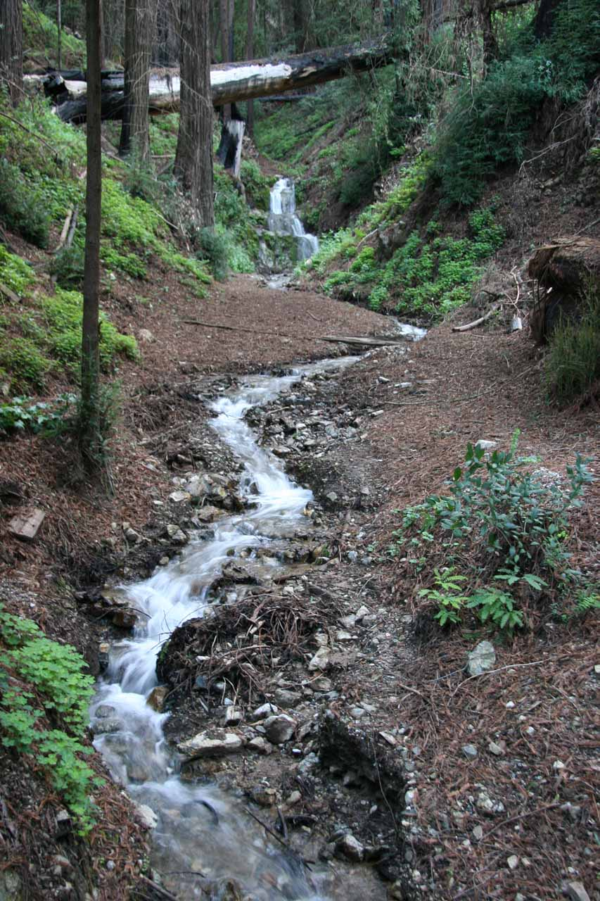 The tiny upper waterfall and stream