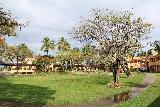 Denerau_045_11102019 - Another look across the lawn area at the Sheraton Fiji in Denerau