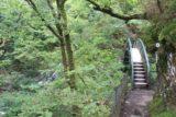Devils_Bridge_078_09032014 - The bridge crossing the Afon Mynach