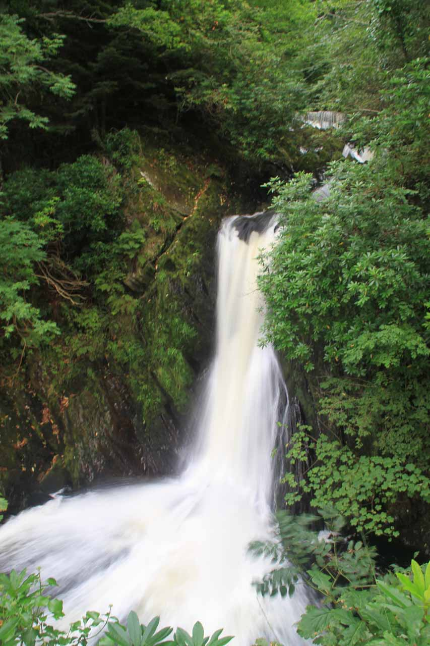 This was probably the last of the partial views of Mynach Falls that we were going to get on this excursion
