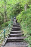 Devils_Bridge_117_09032014 - Julie and Tahia still climbing up the last of the Waterfall Nature Walk at Devil's Bridge