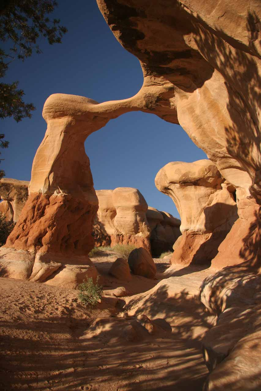 Besides the Hole-in-the-Rock road, which leaves from the town of Escalante, there were impressive rock formations in the Devil's Garden like this natural arch I think is called Metate Arch