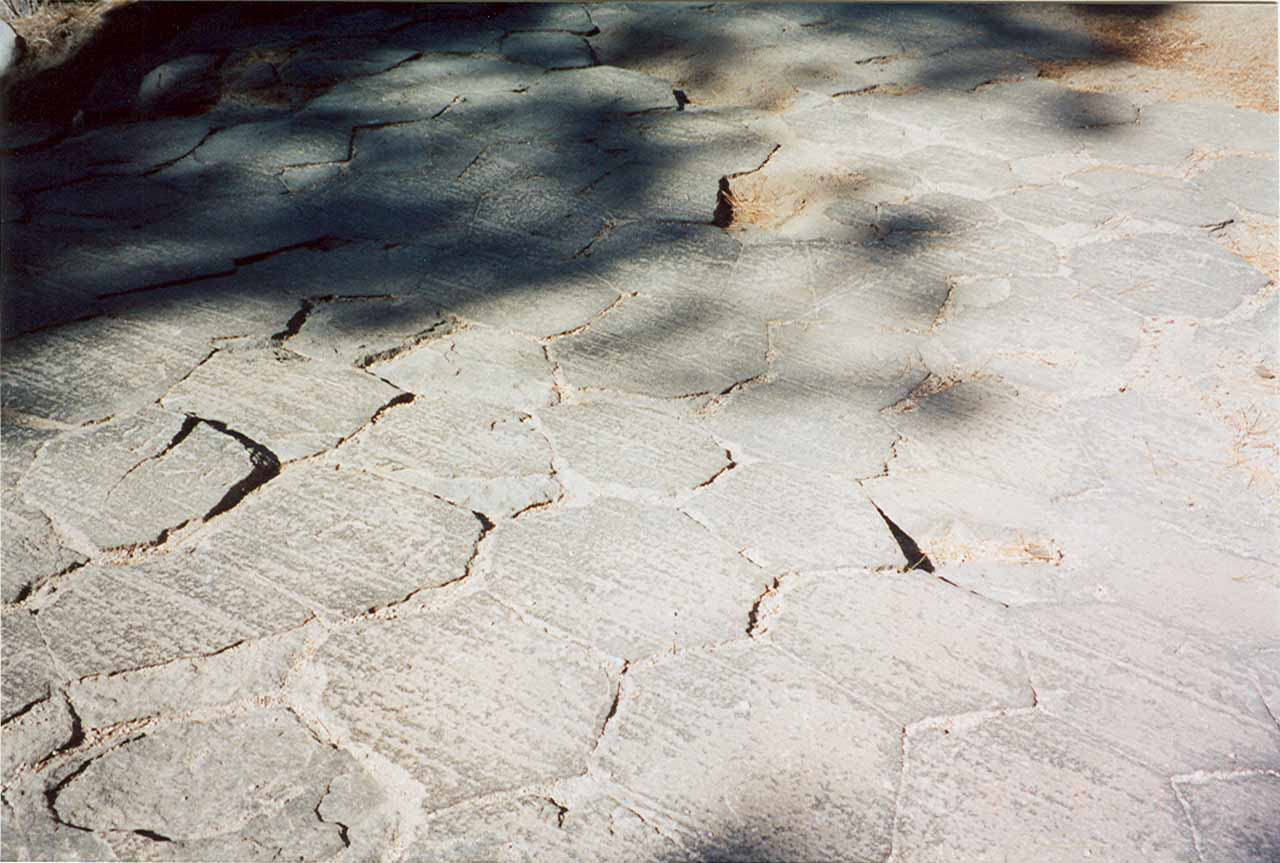 Hexagonal flooring at the top of the Devil's Postpile as seen back in 2001