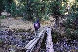 Devils_Punch_Bowl_Crystal_Mill_102_10172020 - Julie crossing a makeshift bridge where a sign said 'Bridge to Terabithia'