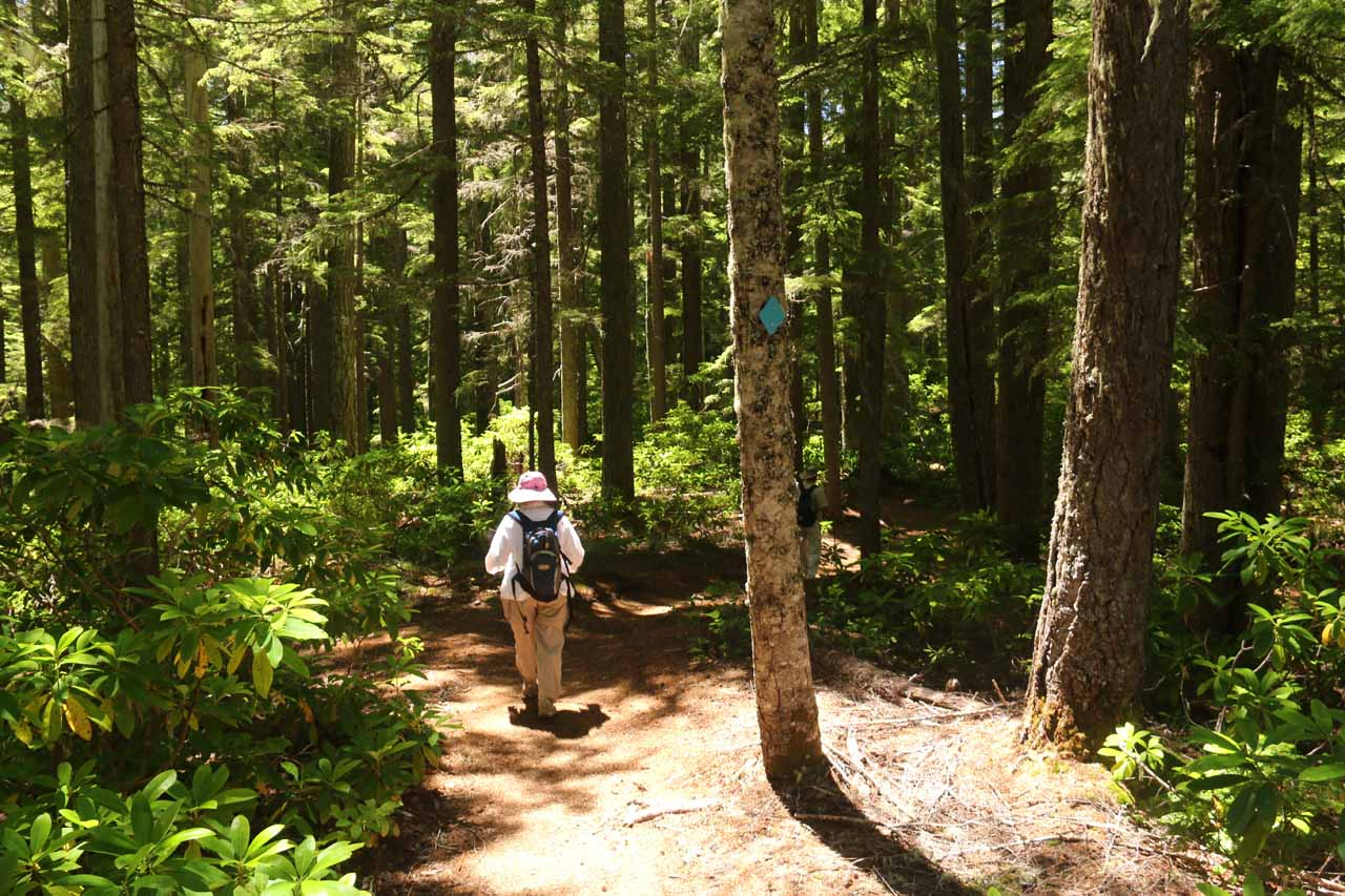 Mom continuing to follow the blue diamonds to stay on the Diamond Creek Loop Trail