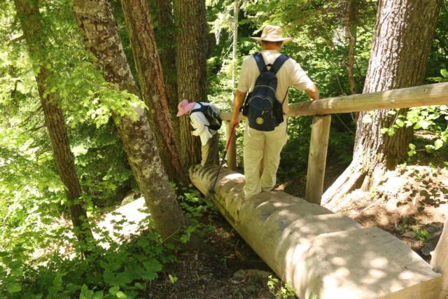 Diamond_Creek_Falls_080_07142016 - Mom and Dad descending the nifty log-carved steps on the spur trail to the bottom of the Diamond Creek Falls