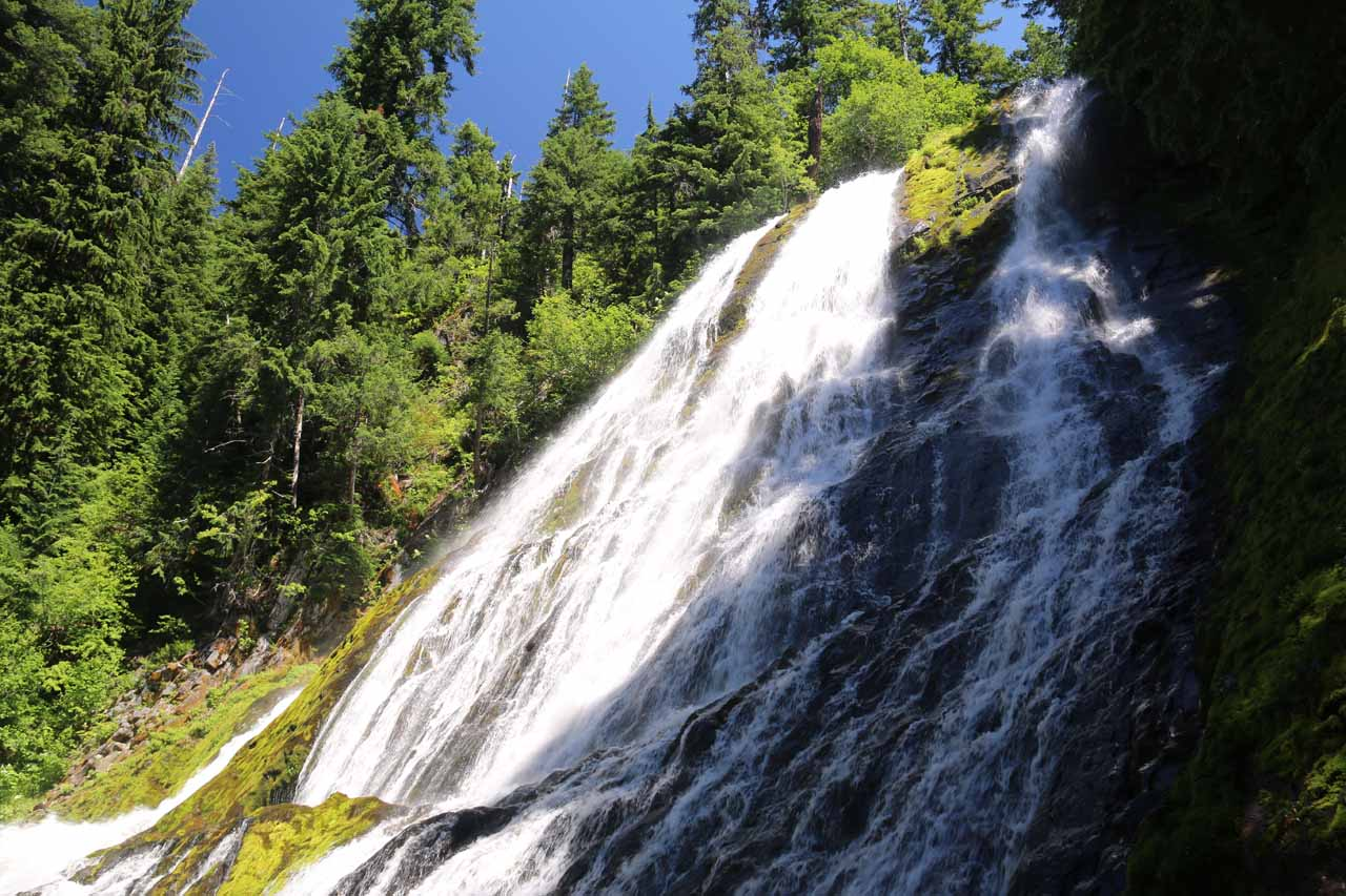 Looking up from the base of Diamond Creek Falls