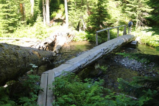 Diamond_Creek_Falls_127_07142016 - Dad going back across the one-sided log bridge over Diamond Creek after having had our fill of the Diamond Creek Falls