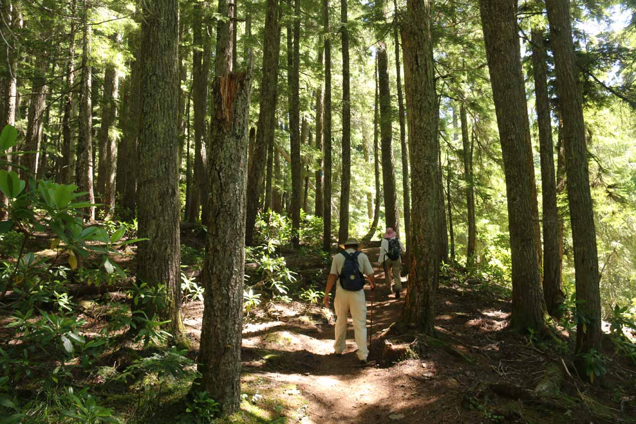 Mom and Dad back on the main Diamond Creek Loop Trail