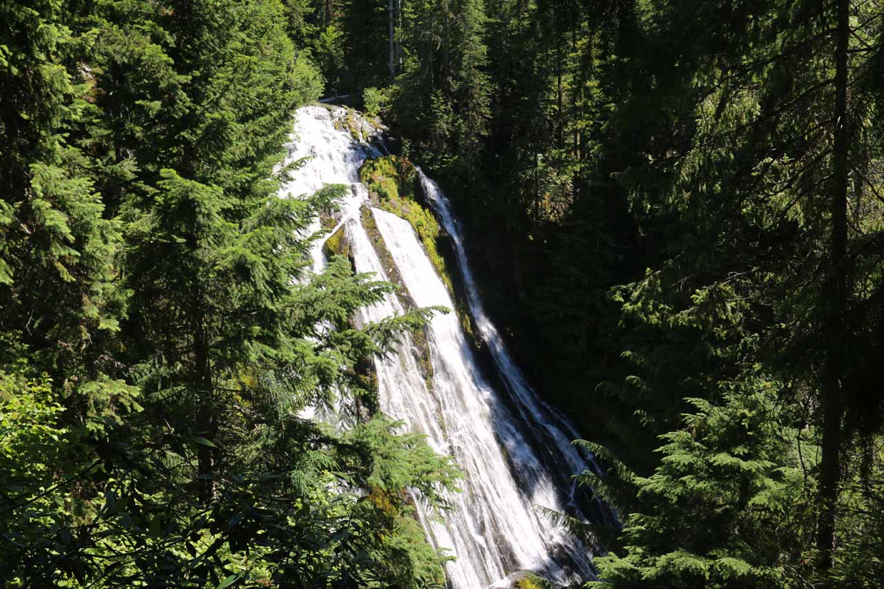 Since Salt Creek Falls and Diamond Creek Falls shared the same parking lot, it was well-worth the effort to extend the visit and do the loop hike to take in this very different waterfall