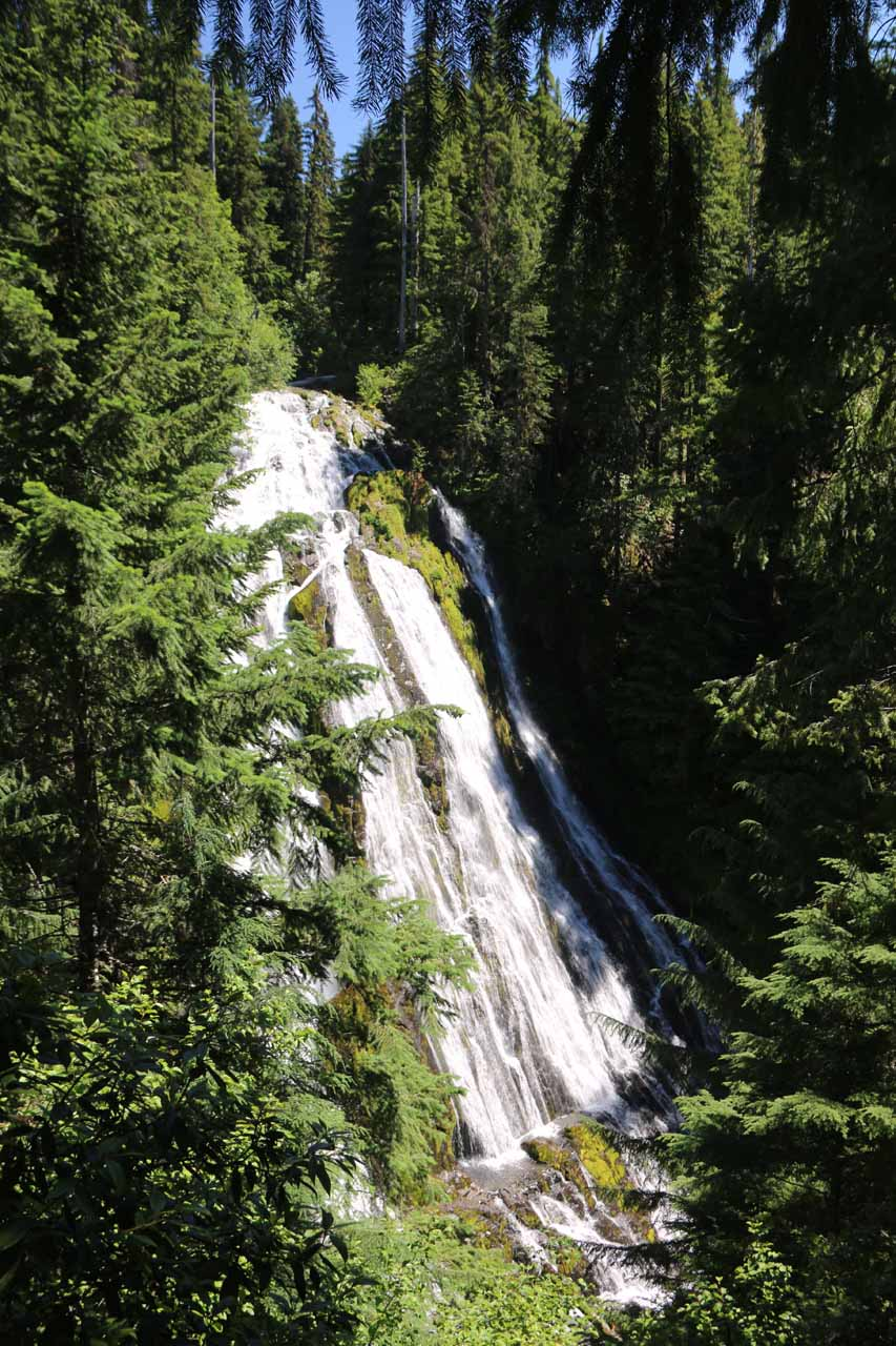 Literally minutes after regaining the Diamond Creek Loop Trail, we got this view of Diamond Creek Falls from a higher vantage point alongside the main trail