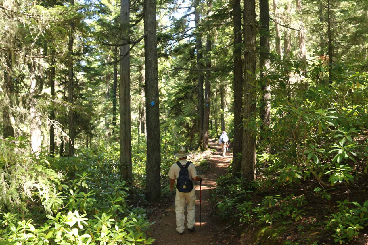 The last part of the counterclockwise loop hike that we did was pretty featureless as we were non-stop hiking through the forest following blue diamonds while also trying not to stop and allow mosquitos to get free shots at us