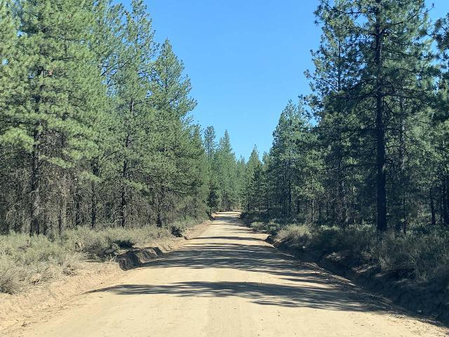 Dillan_Falls_001_iPhone_06272021 - On the unpaved Dillon Falls Road