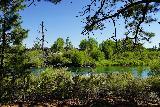 Dillan_Falls_007_06272021 - Looking across another calm part of the Deschutes River somewhere upstream of Dillon Falls