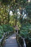 Doi_Inthanon_018_12292008 - Walking on the Ang-ka Nature Trail
