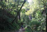 Dolgoch_Falls_015_09022014 - Julie and Tahia passing beneath a railway bridge