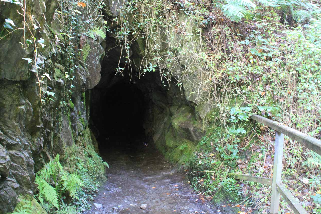The entrance of the cave (or tunnel) besides the first Dolgoch Falls