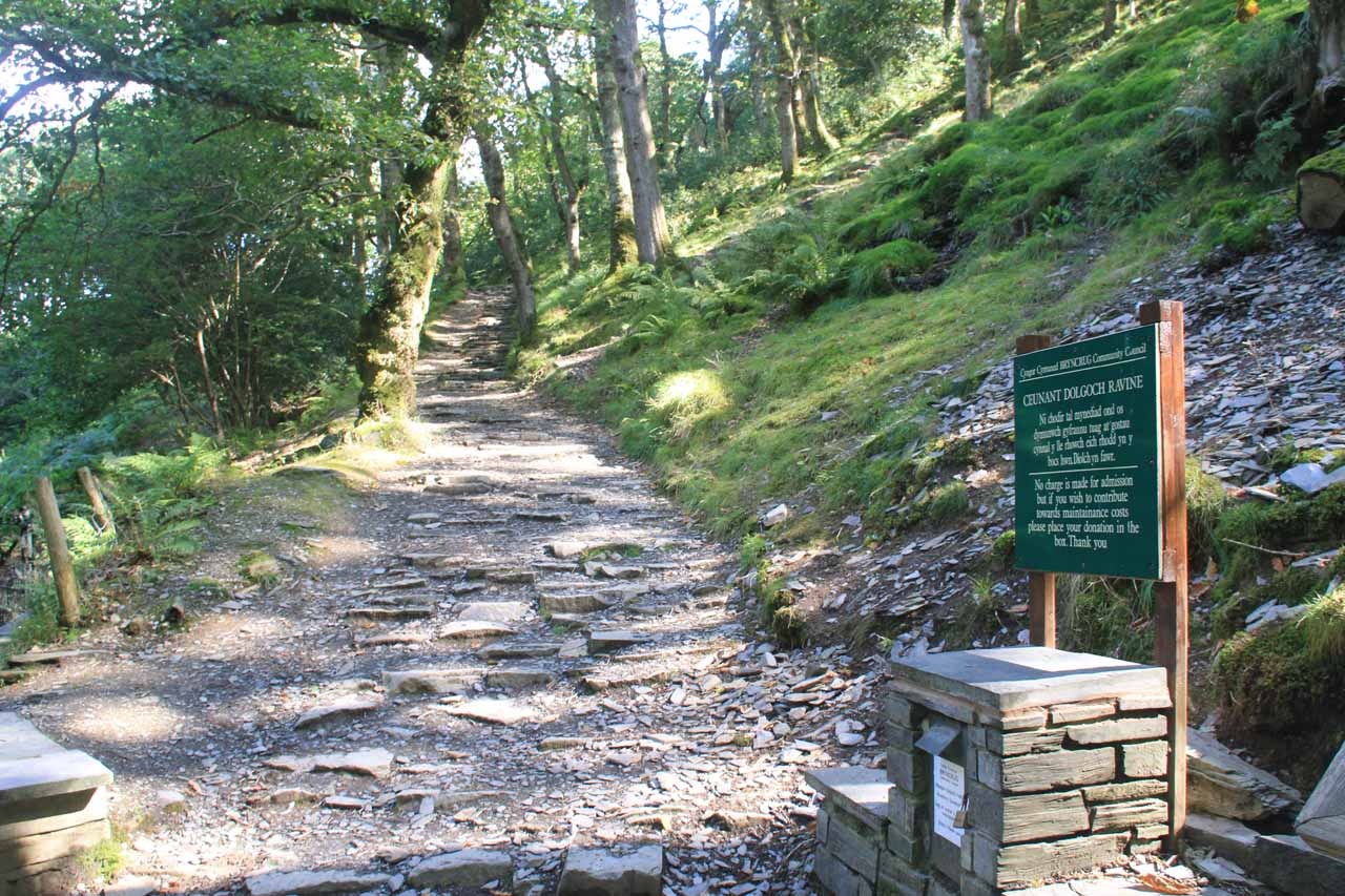 The path leading to Ceunant Dolgoch Ravine