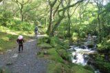 Dolgoch_Falls_043_09022014 - Julie and Tahia on the trail following along Nant y Dolgoch