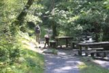 Dolgoch_Falls_046_09022014 - This was a fairly extensive section of flat trail even passing by some picnic tables