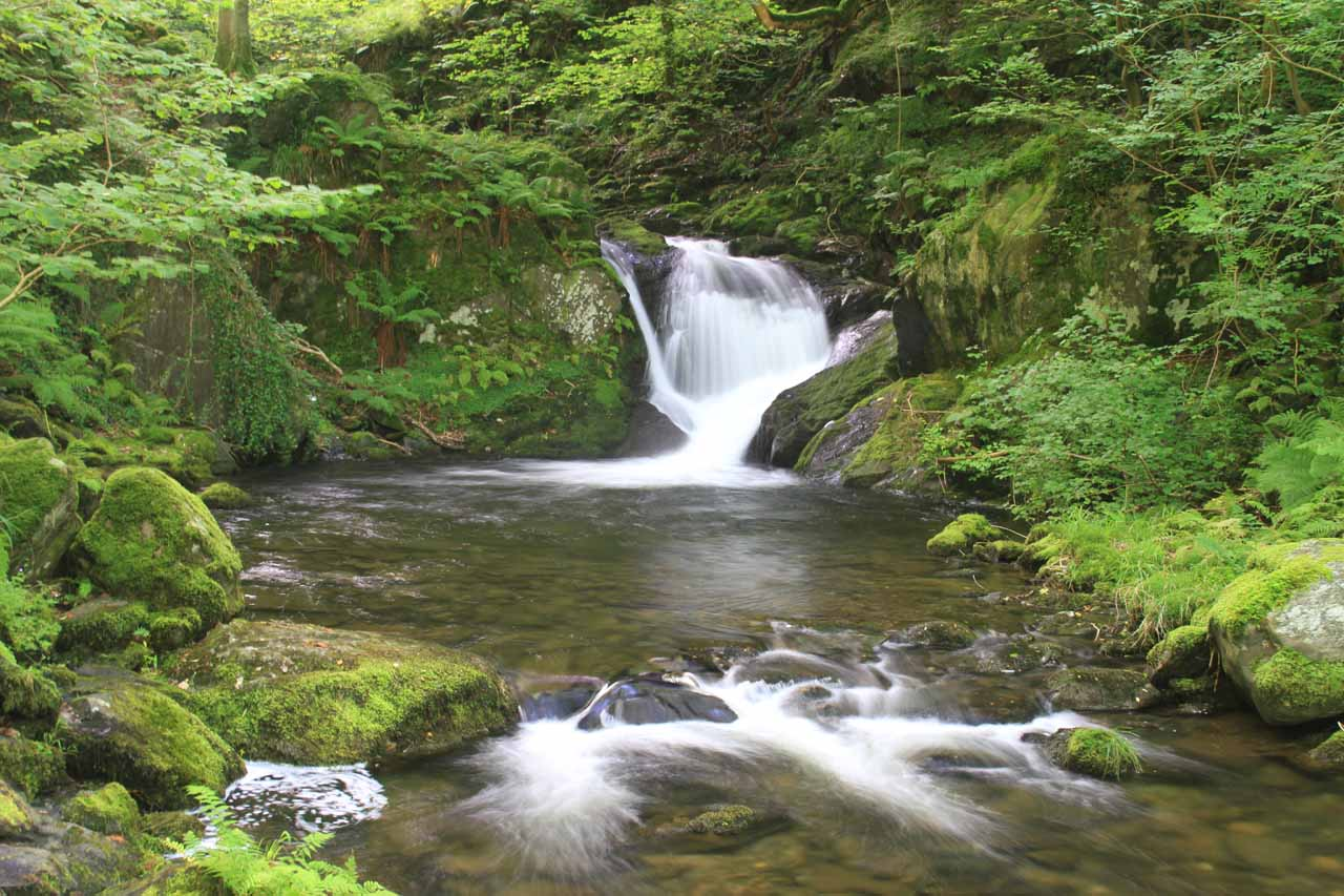 Passing by an attractive cascade somewhere between the middle and upper Dolgoch Falls