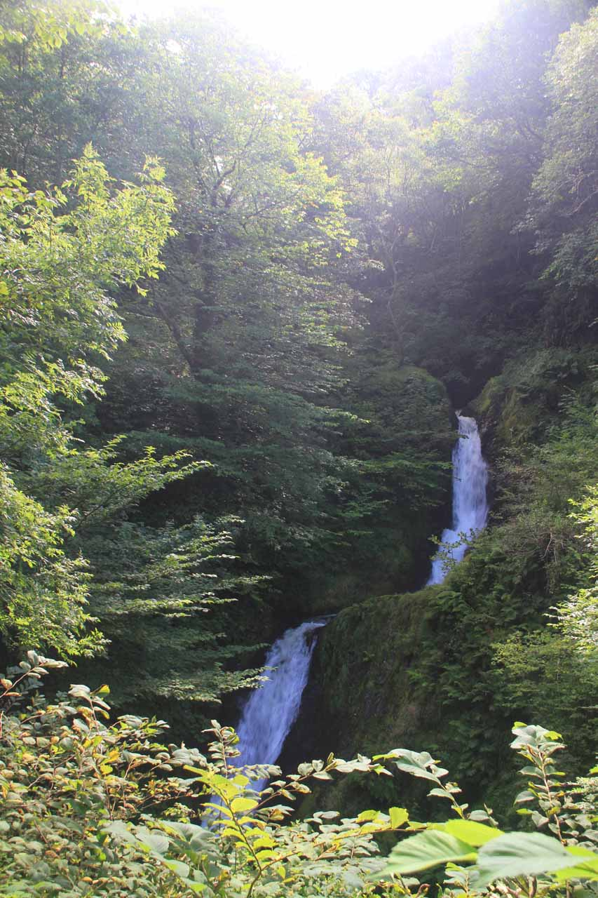 The Middle Dolgoch Falls