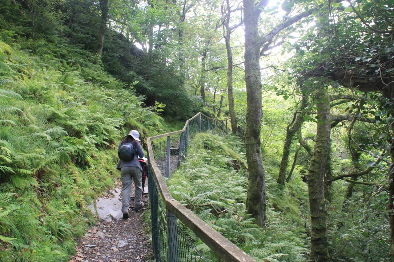 Julie and Tahia continuing the climb up the narrow path beyond the second Dolgoch Falls