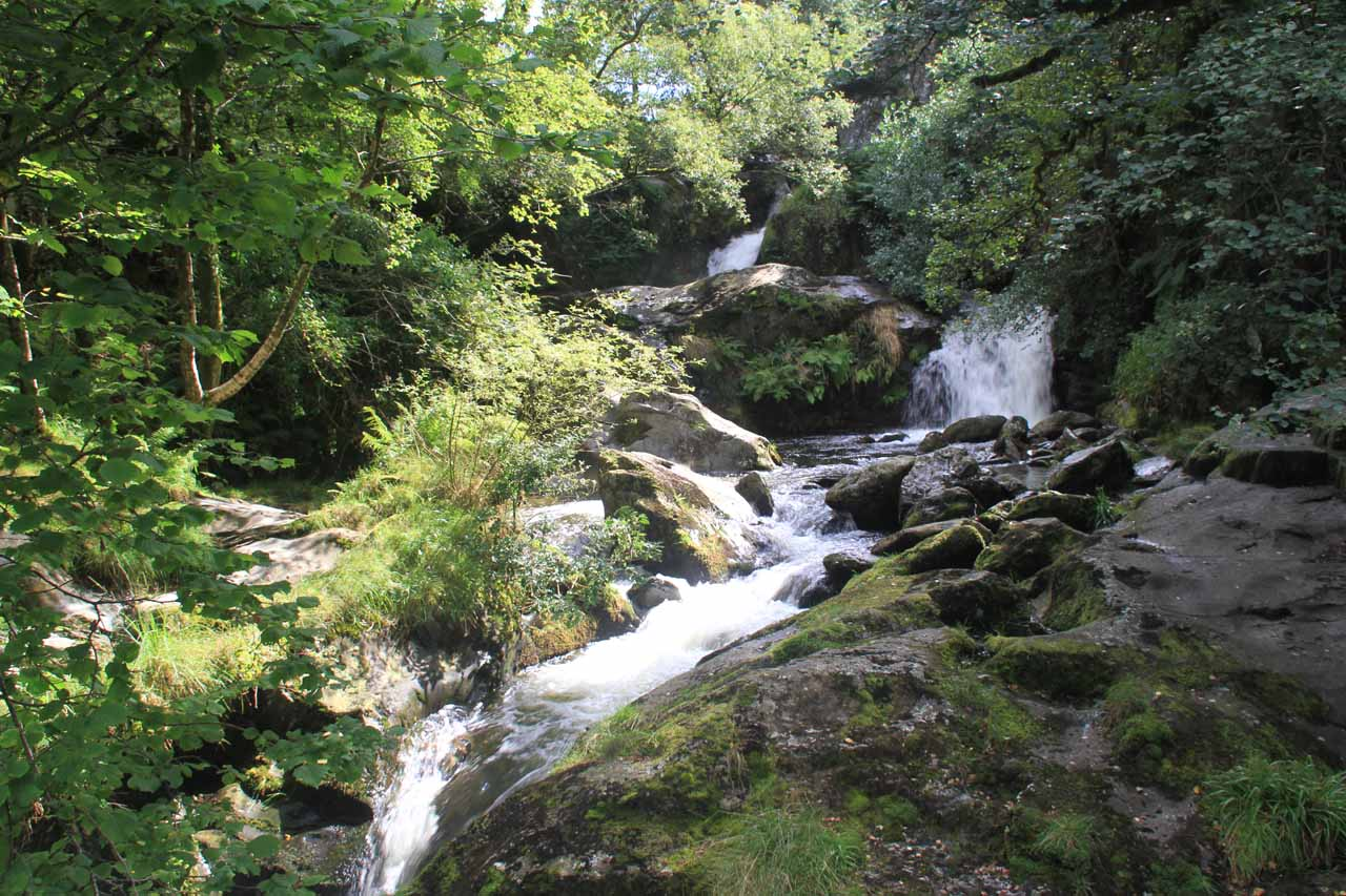 Looking upstream at the last of the Dolgoch Falls